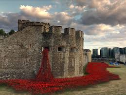WW1 poppies art piece Tower of London
