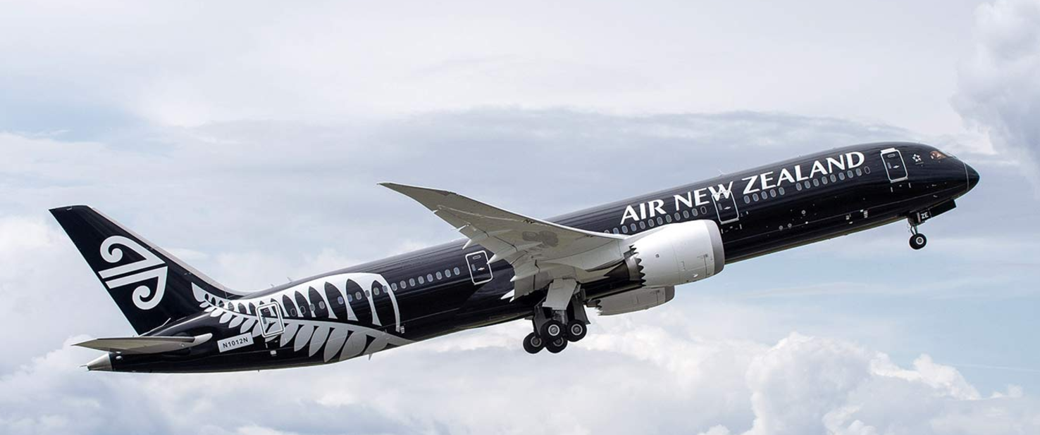Air New Zealand excess baggage charge